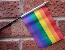 HAND WAVING FLAG (SMALL) - Rainbow